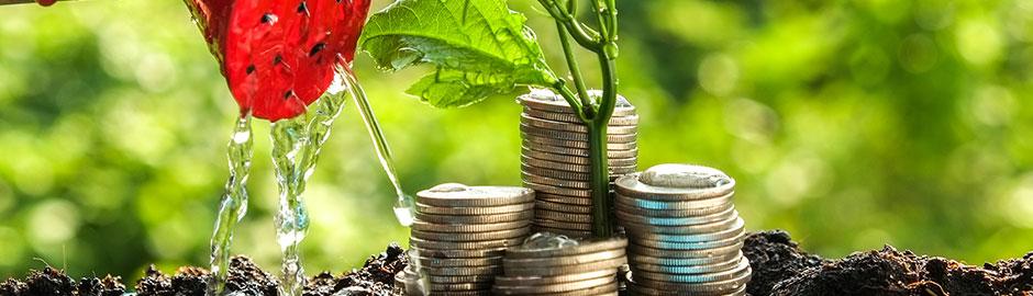 Münzgeldstapel mit Gießkanne und Pflanzentrieb