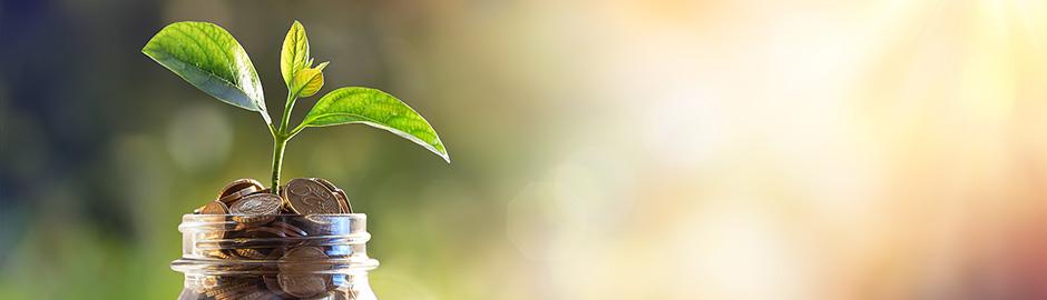 Fondssparen - der clevere Vermögensaufbau mit Rendite-Chance für Ihre Geldanlage