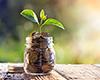 Fondssparen - der clevere Vermögensaufbau mit Rendite-Chance für Ihre Geldanlage!